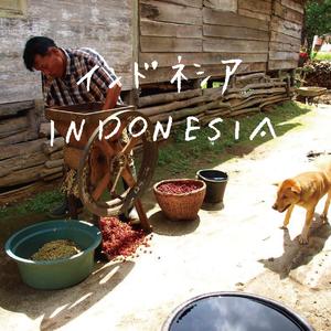 インドネシア (深煎り) 250g