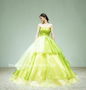 グリーンオーガンジードレス(パニエ付き)結婚式披露宴/前撮り/演奏会ドレス