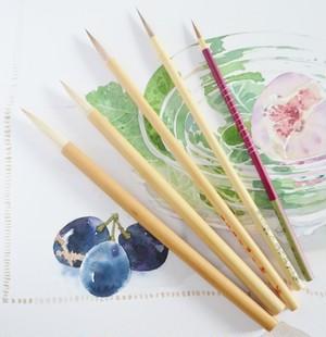 ビギナー向け柘植彩子セレクト日本の筆5本セット ポストカード付き