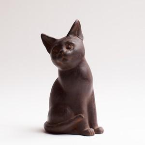 仔猫4 kitten4