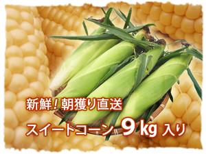 【送料無料】巴農場の朝もぎとうもろこし9kg入【発送中】