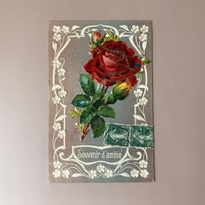 アンティーク薔薇のポストカード・c /  vp0139