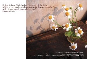 Bible Word ポストカード♯005