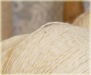かせ糸:コットン100% 糸 250g  生成 毛糸