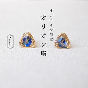 WEB限定 ▶ オリオン座のピアス  【樹脂ピアス / イヤリング】