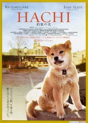 (1) HACHI 約束の犬