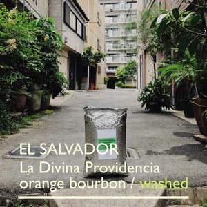 EL SALVADOR  [o.b]  -中浅煎- 200g