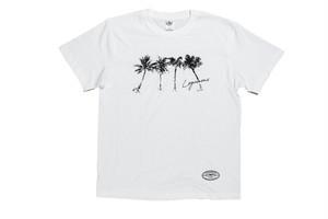 7/11(土)18:00【brush palm tree T-shirt】/ white