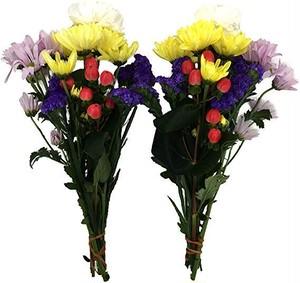 送料無料!ロングサイズ【生花の仏花】鮮やかプレミアム1対(2束) お墓に A-6−2