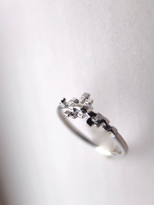 grani~粒々~silver ring  (テクスチャー)