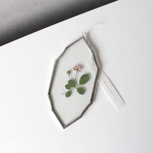 ミニバラ / A piece of nature Plate