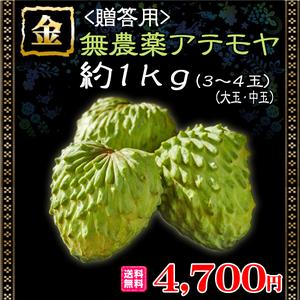 【贈答・家庭用】【送料無料】無農薬アテモヤ約1kg(3~4玉)【大玉・中玉】