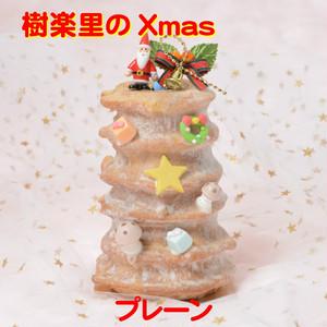 樹楽里のクリスマス プレーン