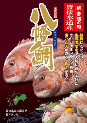 八幡鯛(マダイ)