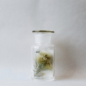 × SILENT POETS GLASS CONTAINER NO.2 (X)