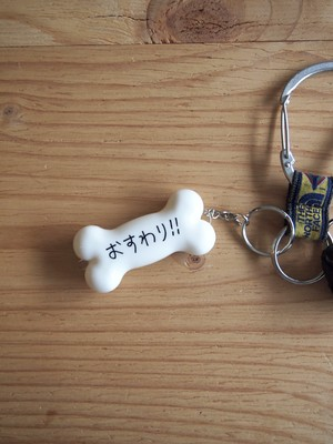 SHAKASTICS, Ken Kagami LED BONE KEY CHAIN