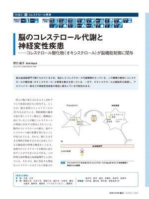 2016年5月号/特集2/野口 範子 氏
