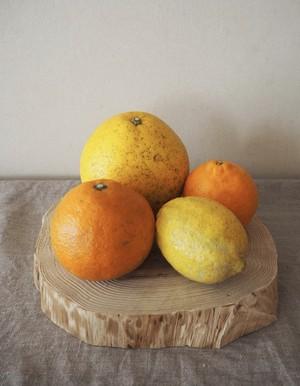 春の柑橘BOX+レモン【3㎏箱入り】