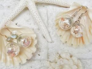 再×7販★極小貝殻のドームピアス