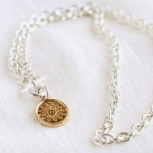 Oval Signet Necklace (combi)