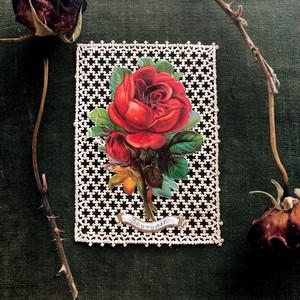 薔薇のカード
