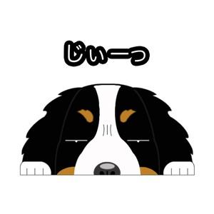 見てまステッカー【バーニーズ】 犬 ステッカー シール