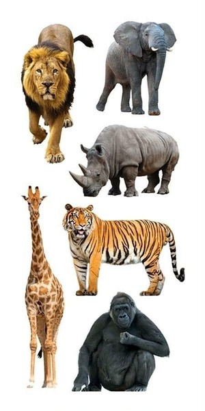 Zoo Animals /PH