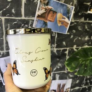 【DW Home Candles】CITRUS GROVE SUNSHINE【アロマキャンドル】
