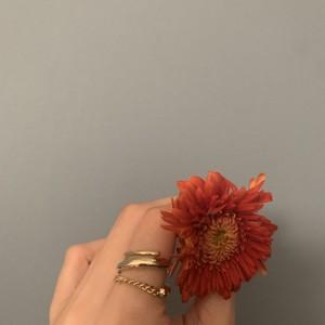 ed ring