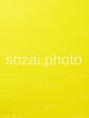 【D-parts_B_15】写真素材(背景写真セット 実写画用紙 黄色&緑)