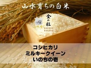 【金の粒】10㎏・白米(5㎏×2袋)