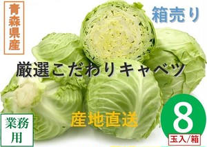 【新鮮野菜】キャベツ 1箱/8玉入り 青森県産【業務用・大量販売】