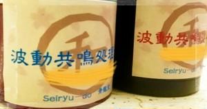 M波動プラス「スペシャルオーダーメイド」Seiryu-Doで購入の品を波動共鳴化施術 / BASEからのお申込用