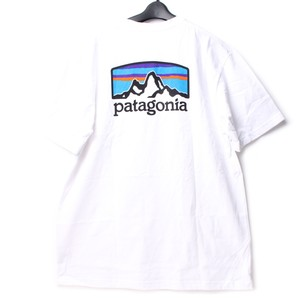 patagonia パタゴニア Tシャツ WHITE M [全国送料無料] r016953
