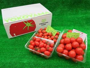 ミニトマトMIX1.5kg入り + トマトリーニ1.5kg入り