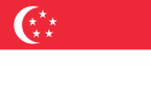 日本の不動産登記のためのシンガポール人向け宣誓書サンプル