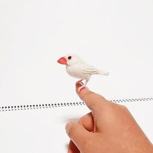 白文鳥マスコット