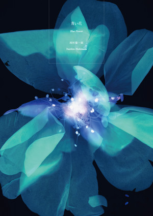 西村陽一郎写真集 青い花