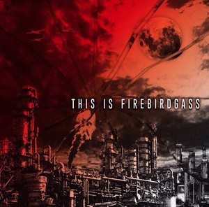 "FIREBIRDGASS 1st FULLALBUM ""THIS IS FIREBIRDGASS"" (CD)"