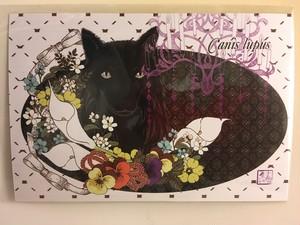 【夏雪】60 ポストカード花と大神黒