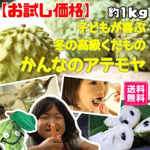 【お試し価格】無農薬アテモヤ 約1kg(4~5玉)小玉