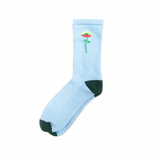 PARK DELI - SINGLE STEM SOCK (Sky)