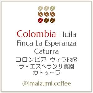 【送料込】コロンビア ウィラ地区 ラ・エスペランサ農園 カトゥーラ - Colombia Huila Finca La Esperanza Caturra - 300g(100g×3)