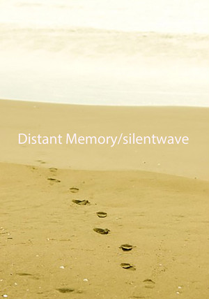 distant memory/silentwave