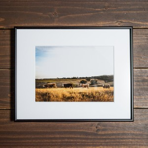 Photo Frame 2L(牛)