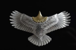 Light Medium eagle