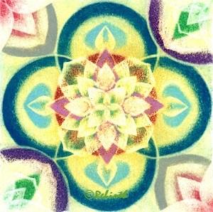 「咲く時」mini 画像