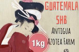 グァテマラ アンティグア もっとお得な1kg コーヒー豆【シティロースト】