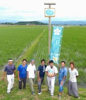 石川県産有機栽培コシヒカリ
