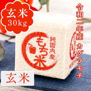 【新米】令和2年産 カグラモチ 玄米30kg